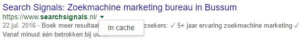 Google-cache-voorbeeld