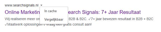website-gecrawld-google-in-cache